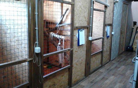 Гостиница для животных Теремок